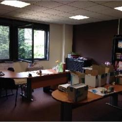 Location Bureau Saint-Quentin-Fallavier 166 m²