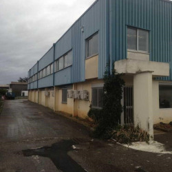 Location Local d'activités Chassieu 613 m²