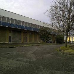 Location Entrepôt Toulouse (31400)