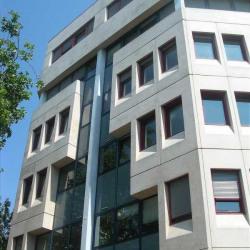 Location Bureau Lyon 3ème 475 m²