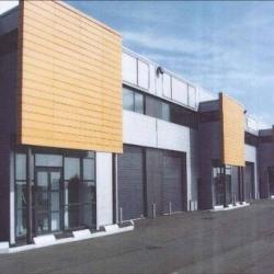 Location Local d'activités Montlhéry 420 m²