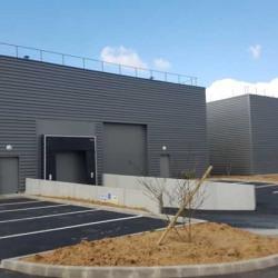 Location Local d'activités Bois-d'Arcy 1084 m²