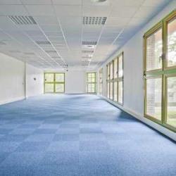 Location Bureau Lognes 381 m²