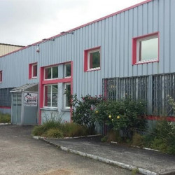 Vente Local d'activités Chanteloup-les-Vignes (78570)