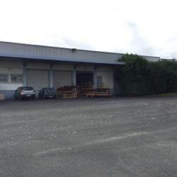 Location Local d'activités Orly 4200 m²