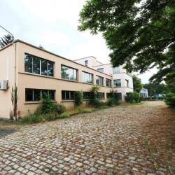 Location Local d'activités Gennevilliers 450 m²