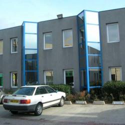 Location Bureau Lyon 7ème 110 m²
