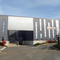 Location Local d'activités Castelnau-d'Estrétefonds (31620)
