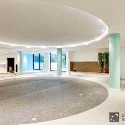 Location Bureau Paris 15ème 1310 m²