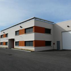 Location Local d'activités Meyzieu 380 m²
