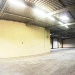 Location Local d'activités Roissy-en-France 846 m²