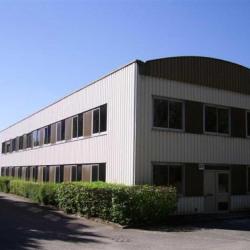 Location Local d'activités Dardilly 1560 m²