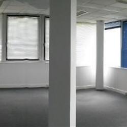 Location Bureau Cesson-Sévigné 260 m²