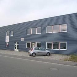 Location Local d'activités Hœnheim 850 m²