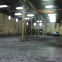 Location Local d'activités Saint-Maur-des-Fossés 500 m²