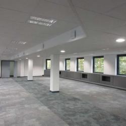 Location Bureau Lyon 3ème 301 m²