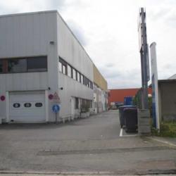 Location Local d'activités Chennevières-sur-Marne 380 m²