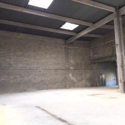 Location Local d'activités Lognes 209 m²
