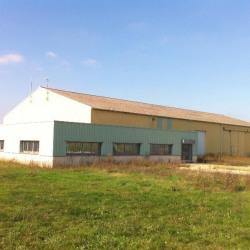 Location Local d'activités Marcilly-en-Villette 2040 m²