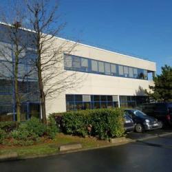 Location Local d'activités Gennevilliers 722 m²