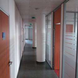 Location Bureau Guyancourt 244 m²