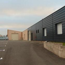 Location Local d'activités Châteaubourg 425 m²