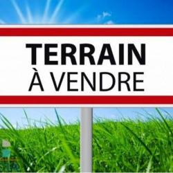 Vente Terrain Sargé-lès-le-Mans 0 m²