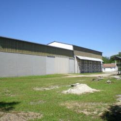 Vente Local d'activités Foëcy 2410 m²
