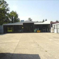 Vente Entrepôt Haguenau 1500 m²