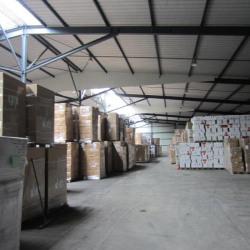 Vente Entrepôt Berteaucourt-les-Dames 28276 m²