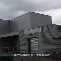 Vente Local d'activités Villeneuve-Tolosane 700 m²