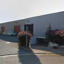 Vente Local d'activités Lisses 5500 m²