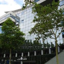 Location Bureau Lyon 3ème 208 m²