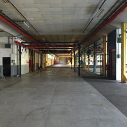 Vente Local d'activités Saint-Valery-en-Caux 7290 m²