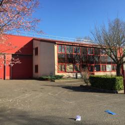 Location Local d'activités Bondoufle 379 m²