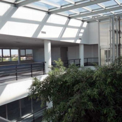 Location Bureau Carrières-sur-Seine (78420)