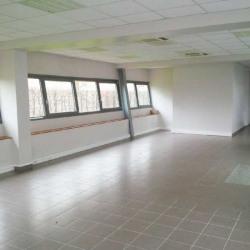 Location Local d'activités Serris 834 m²