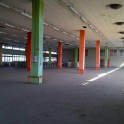 Location Entrepôt Toulouse 12552 m²