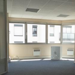 Location Bureau Lyon 3ème 223 m²