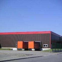 Location Entrepôt Geispolsheim 7390 m²