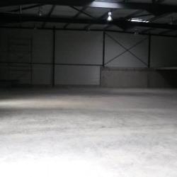 Location Local d'activités Vendargues 956 m²