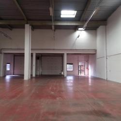Location Local d'activités Villebon-sur-Yvette 2473 m²