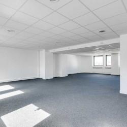 Location Bureau Issy-les-Moulineaux 160 m²