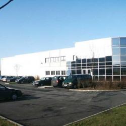 Vente Entrepôt Combs-la-Ville 3926 m²