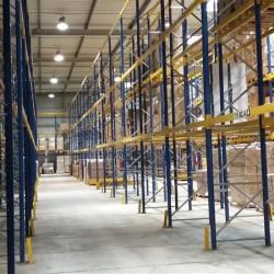 Vente Entrepôt Lagny-sur-Marne 9385 m²