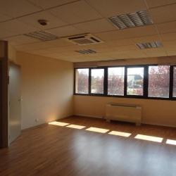 Vente Bureau Barberaz 180 m²