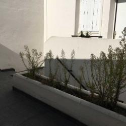 Location Bureau Gentilly 190 m²