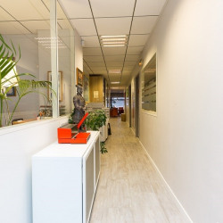 Vente Local commercial Toulouse 220 m²
