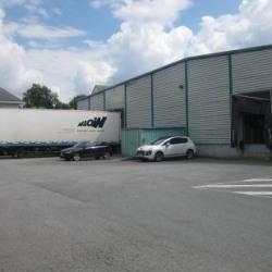 Location Local d'activités Saint-Herblain 2747 m²