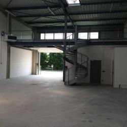 Location Local d'activités Grigny 1135 m²